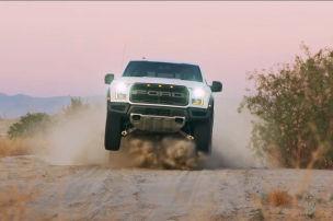 Raptor in der Wüste