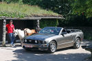 Ford Mustang GT Premium Cabrio