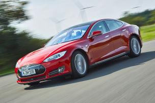 Tesla bei Fuß