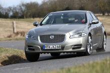 Jaguar XJ & Co.: Edle Rarit�ten f�r Kenner
