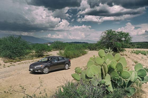 Ford Focus mit Opuntie
