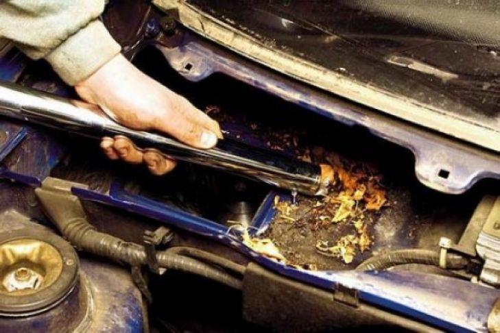 Fußboden Im Auto Reinigen ~ So legen sie ihr auto trocken bilder autobild.de