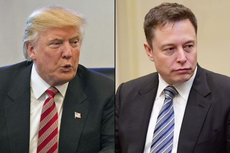 Trump holt Musk in Beraterstab