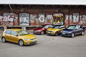 Welcher VW passt am besten?