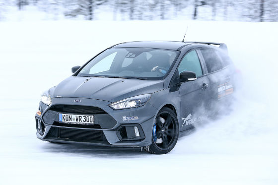 Wolf Focus RS