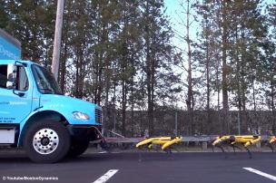Roboter-Hunde schleppen Truck ab