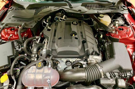 Lieber einen Mustang mit Vierzylinder kaufen?