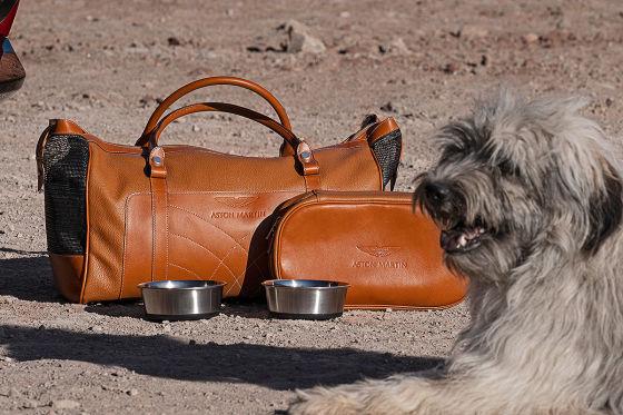 Hunde-Ausstattung für den DBX