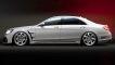 """Mercedes S-Klasse: """"Black Bison"""""""