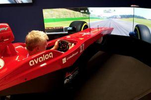 Schweizer F1-Simulatoren als L�sung?