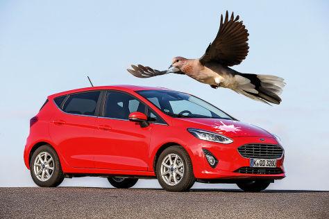 Ford erprobt Vogelkot