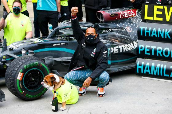 Hamiltons Hund Star in Mercedes-Werbespot