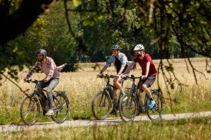 Neun Trekking-E-Bikes im Test