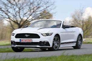 Ford Mustang Cabrio: gebraucht
