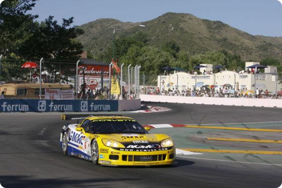 FIA GT-Meisterschaft 2008, Fabrizio Golin und Mike Hezemans, (Corvette Z06)