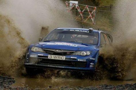 Den Subaru Impreza wird man unter Adapta-Flagge vielleicht nur selten sehen