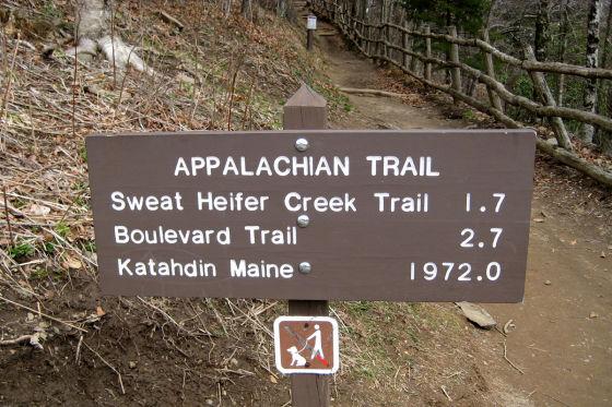 Eintritt in die Wildniss: Der Appalachian Trail (3440 km) ist einer der längsten und schönsten Fernwanderwege der Welt.