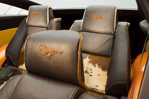 Wenn's irgendwie nach Pferd riecht: Schieben Sie's einfach auf die Sitze!