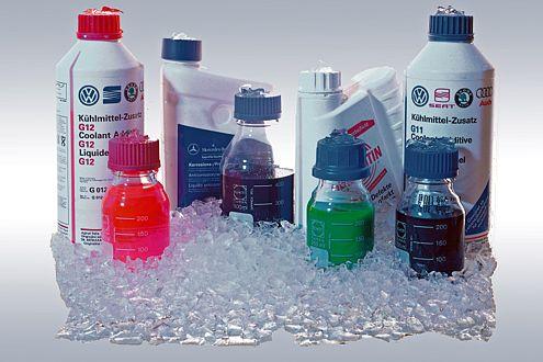 Froststutz ist nicht gleich Frostschutz, immer auf die richtige Farbe und Nummer achten.