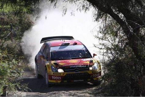Petter Solberg hat der Rallye Mexiko bisher seinen Stempel aufgedrückt