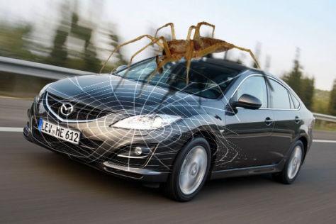 Mazda6 mit Gelber Sackspinne