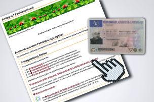 KBA-Punkte in Flensburg: Online-Abfrage